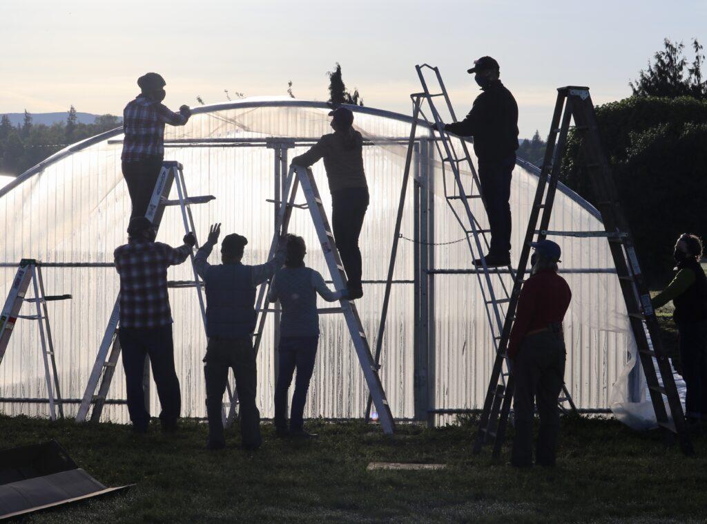 Building a hoop house at Blanchard Mountain Farm, Skagit Valley Washington